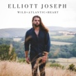 Elliott Joseph A Song for the Summer