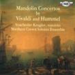 Vyacheslav Kruglov Mandolin Concertos by Vivaldi and Hummel