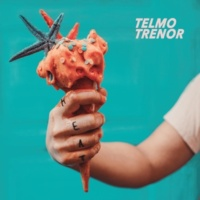 Telmo Trenor In Touch (Pocket Ballad)