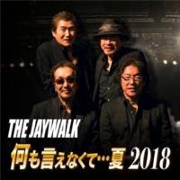THE JAYWALK 何も言えなくて…夏 2018 (アコースティックVer.)