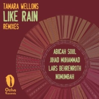 Tamara Wellons Like Rain