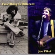 Joe Piket Everything is Different