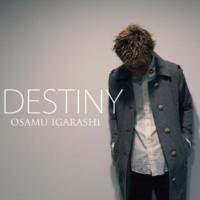 OSAMU IGARASHI DESTINY