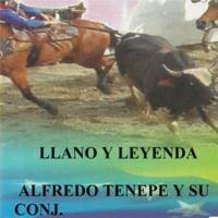 Alfredo Tenepe y Su Conjunto Flor de Bora