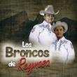 Los Broncos de Reynosa La Pachuca