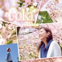 yoshino toki