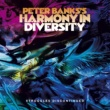 Peter Banks's Harmony in Diversity Struggles Discontinued