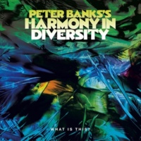 Peter Banks's Harmony in Diversity What is This?