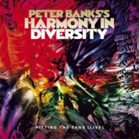 Peter Banks's Harmony in Diversity Industrial Powder Washing
