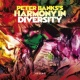 Peter Banks's Harmony in Diversity Trying