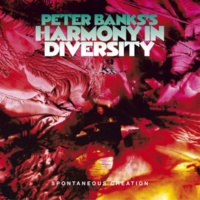 Peter Banks's Harmony in Diversity Now Now