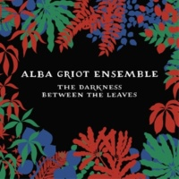 Alba Griot Ensemble Alba Griot Ensemble: The Darkness Between the Leaves