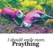 Praything I Should Smile More