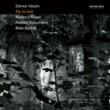 デーネシュ・ヴァーリョン Schumann: Phantasiestücke, Op. 12 - 8. Ende vom Lied