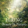 Various Artists HIKING -Beauty In Nature-
