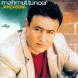 Mahmut Tuncer Leylo