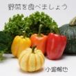 小堀暢也 野菜を食べましょう