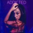 SMJ/Ann G Addicted (feat. Ann G)