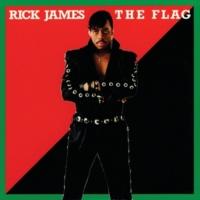 リック・ジェームス The Flag