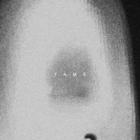 The Acid Fame (Remixes)