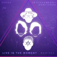 Zeeba Live in the Moment (Remixes)