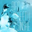 SINSKE Night Birds