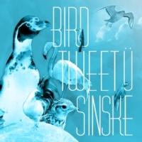 SINSKE BIRD TWEET U