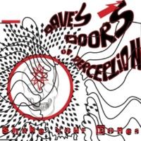 Dave's Doors Of Perception Shake Your Bones