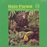 ワルター・ワンダレイ Rain Forest