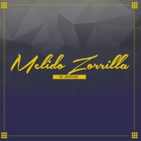 Melido Zorrilla 14 Exitos