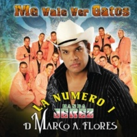 La Numero 1 Banda Jerez De Marco A. Flores Me Vale Ver Gatos