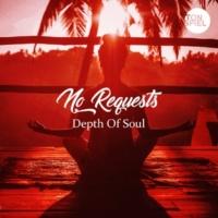 No Requests Depth of Soul