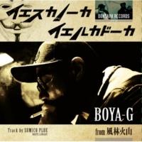 BOYA-G from 風林火山 イエスカノーカ イエルカドーカ