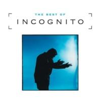 インコグニート Best Of Incognito