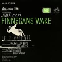 Elliot Kaplan James Joyce's Finnegan's Wake