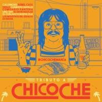 ヴァリアス Tributo A Chico Che