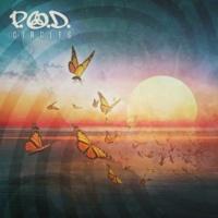 P.O.D. Circles
