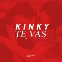 Kinky Te Vas Remixes