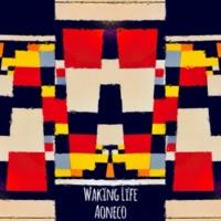 AONECO WAKING LIFE