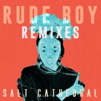 Salt Cathedral Rude Boy (Remixes)