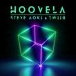 Steve Aoki/TWIIG Hoovela