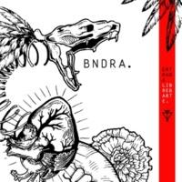 BNDRA Entrada Libre y Arte
