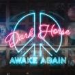 Awake Again Dark Horse