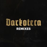 The Wookies/Rawk Darkoteca Remixes