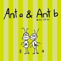 スティーヴンC. Anta&Antb