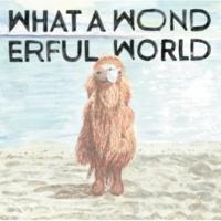 堀込泰行 What A Wonderful World (24bit/48kHz)