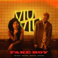 VIU VIU Fake Boy