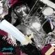 Zoonicks Zoonicks - Radio (Master)