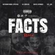 International Special Facts Remix (feat. DJ Khaled, Busta Rhymes & Fat Joe)
