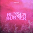 Temgazi Bunsen Burner